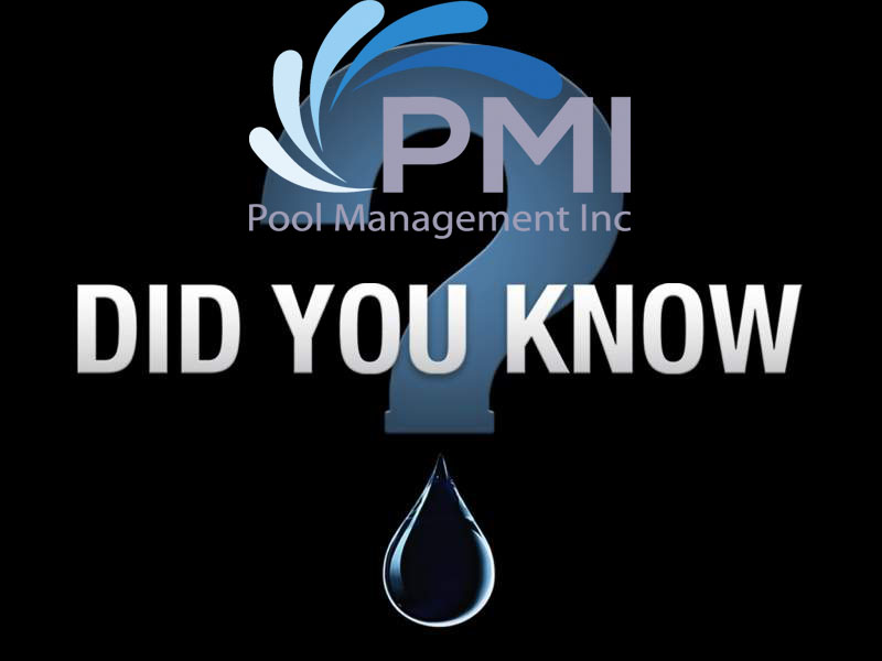 Pool Lifeguard - Did you know