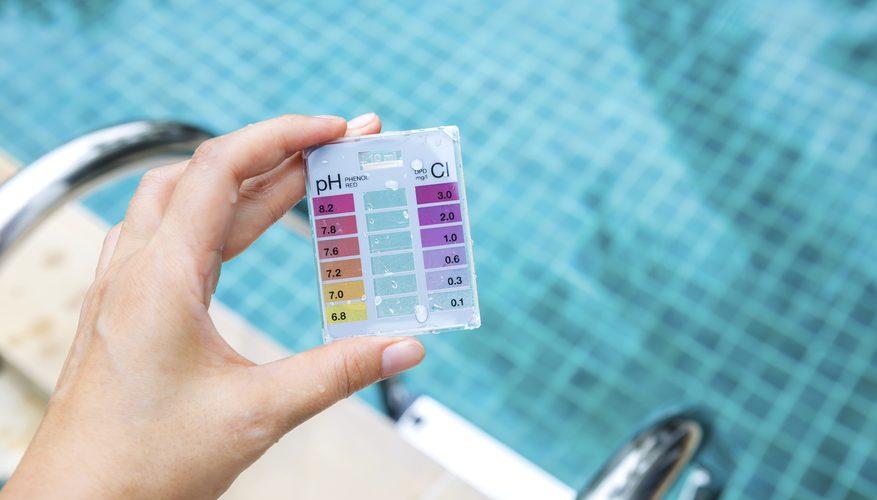 Aquatic pool management Services
